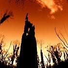 The Black Stump... by Jarrod Lees