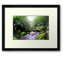 Toronga River Bend... Framed Print