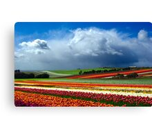 Paintbox Canvas Print