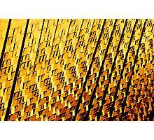 The Gold Rush Photographic Print