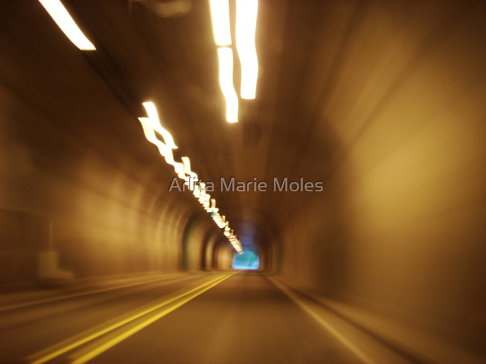 Light at the End of the Tunnel by Arlita Marie Moles