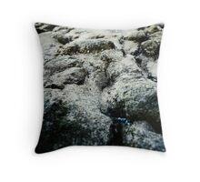 Microchasm v1 Throw Pillow