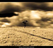 Tree by cienki7