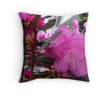 Rhody Throw Pillow