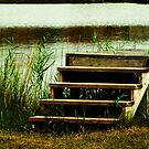 old dock stairs  by Geri Bragg