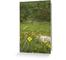 Flowers of Chinchero Greeting Card