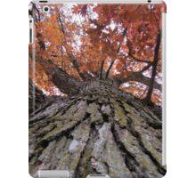 Orange Fall Tree iPad Case/Skin