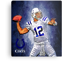 NFL Indianapolis Colts Metal Print
