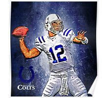 NFL Indianapolis Colts Poster