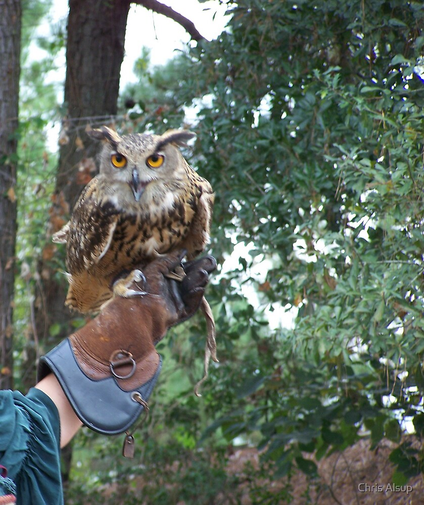 Thats a big o' hooter  by Chris Alsup