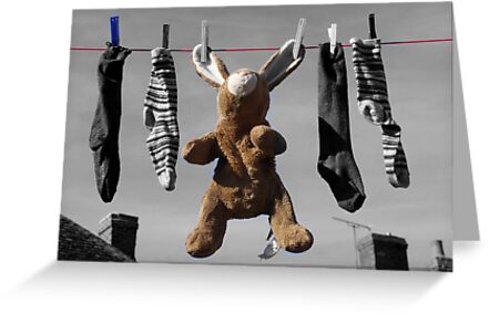 Out To Dry by Bruce Halliburton