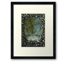 Lux In Tenebris Framed Print