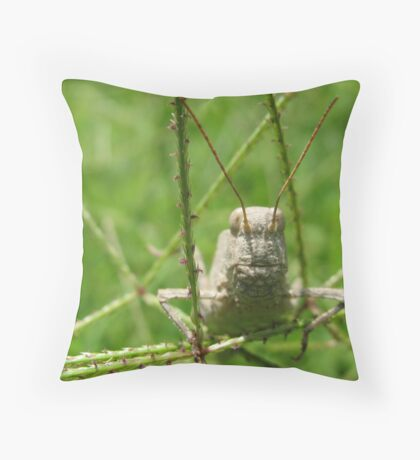 """Come here often?""  Throw Pillow"