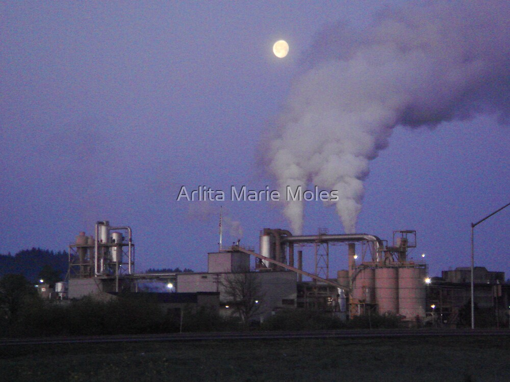 Moon Industrial by Arlita Marie Moles