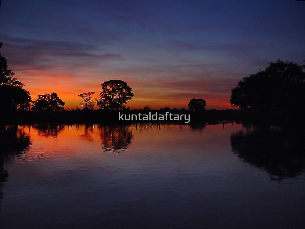 Pantanal Sunset 4 by kuntaldaftary