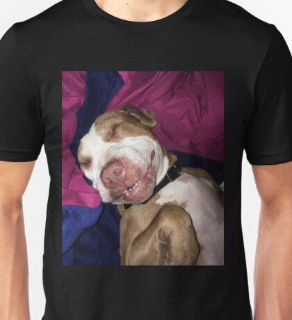 Puppy The Pitbull Cute Funny Sleeping Dog Pit Bull Animals Sticker, Phone Case, Shirt, Mug, Pillow, Poster, Etc Unisex T-Shirt