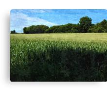 Green wheat field landscape Canvas Print