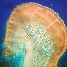 Human Head Cay by Craig Mitchell