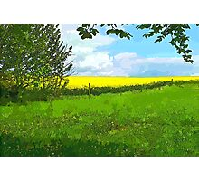 Green field country landscape Photographic Print