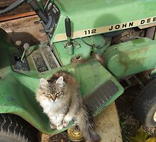 Yes, This is MY John Deere by Mardav7777