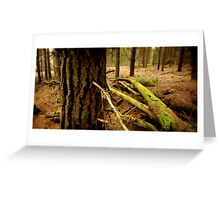 Creswick Forest Pano Greeting Card