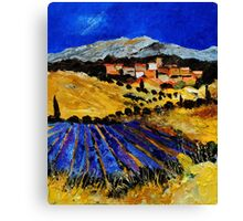provence south of france 562 Canvas Print