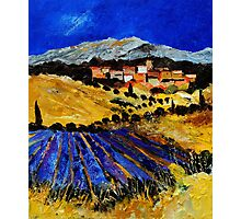 provence south of france 562 Photographic Print