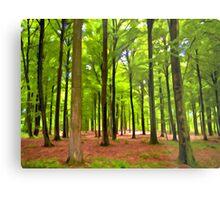 Beautiful lush Forest landscape Metal Print