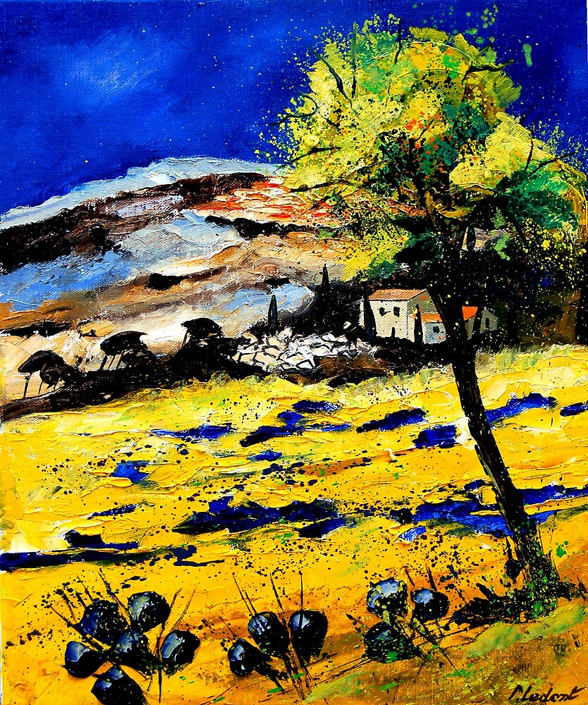 provence south of france 0507 by calimero