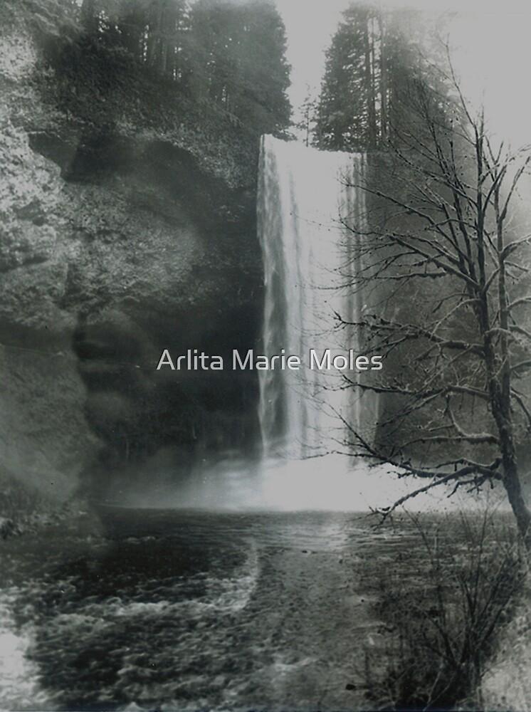 Native Spirit by Arlita Marie Moles