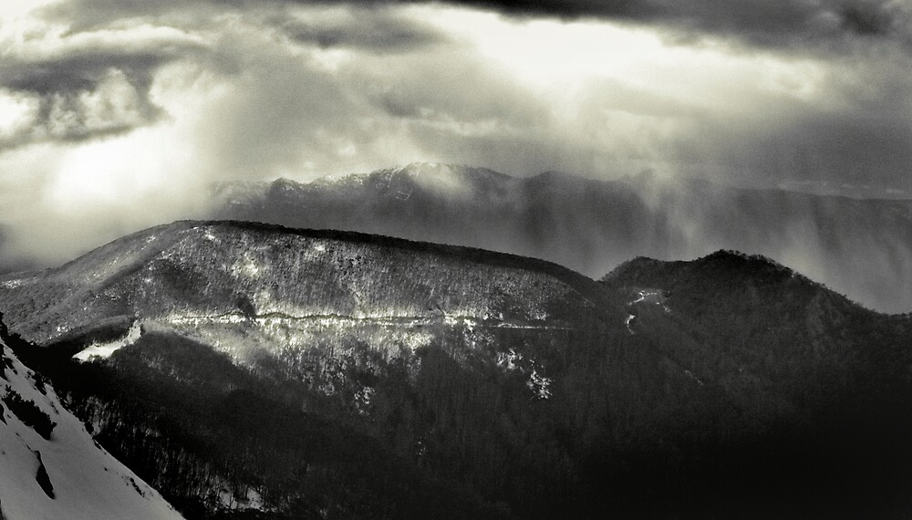 Afternoon Snow Shower, Mount Buller by Craig Mitchell