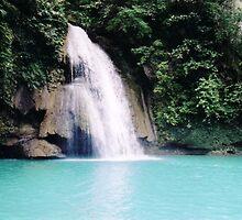 Kawasan Falls - Cebu Philippines by Robert Phelps