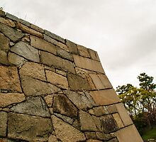 Wall by Nagoya castle by frommyhorizon