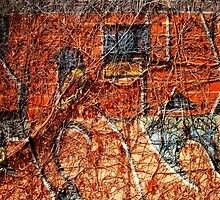 Urban Mural. Graffiti. Street Art. 3 by RGKphotos