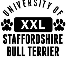University Of Staffordshire Bull Terrier by kwg2200