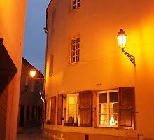 Vilnius Old Town in night. by miniailov