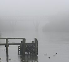Foggy morning on the Waikato River by Chris Hanlon
