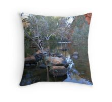 Durba Springs  Throw Pillow