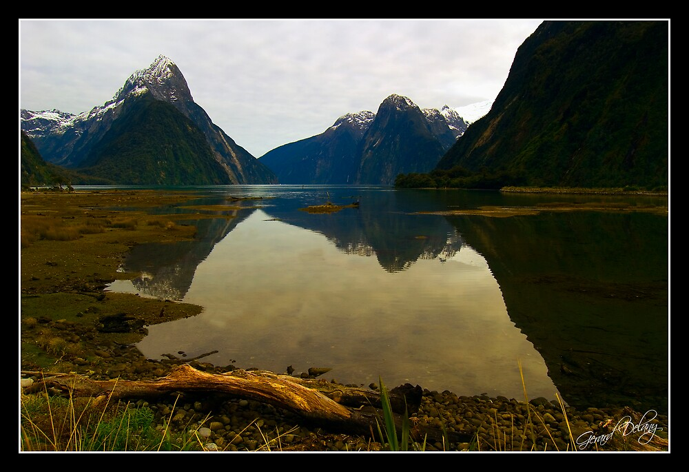 Milford Sound Reflection by Gerard Delany