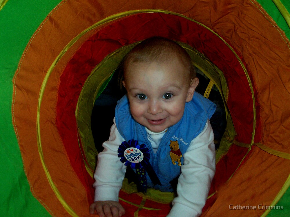 Birthday Tunnel by Catherine Crimmins