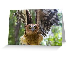 In A Flap Greeting Card