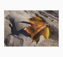 Tulip Tree Leaf - Shadow and Light Kids Clothes