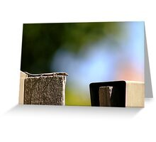 Front Yard Fence Lizard Greeting Card