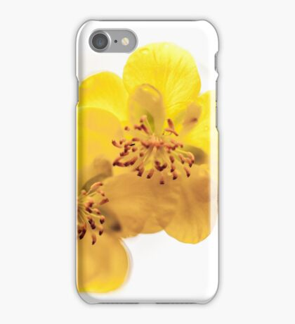 Yellow in Bloom I iPhone Case/Skin