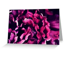 purple flowers Greeting Card