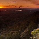 Last Light - Tinbeerwah by AdamDonnelly