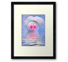 Rose globe Framed Print