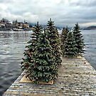 Christmas in Oslo by julie08