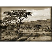 Happy Valley Photographic Print