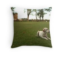quiet, but for only a moment Throw Pillow